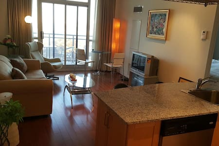 penthouse one bedroon apartment. - Toronto