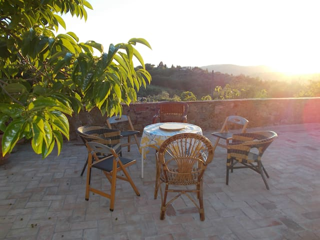 Sunshine in Tuscany's Countryside