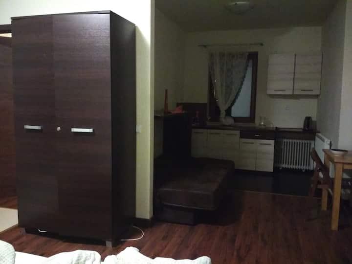 Комфортная квартира в Полтаве