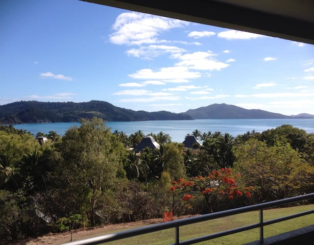 Poinciana 105 (Central location) - Hamilton Island - Apartment