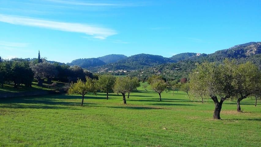 Serra de Tramuntana, lugar idílico - Suite + baño - Mancor de la Vall