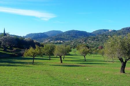 Serra de Tramuntana, lugar idílico - Suite + baño - Mancor de la Vall - Huoneisto