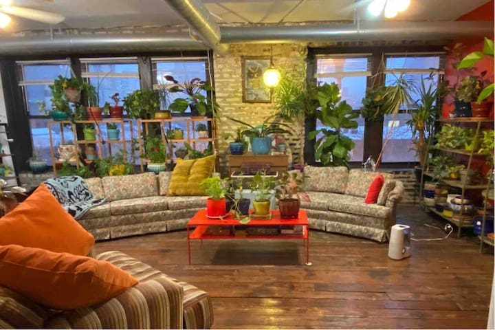 Private Room Plant filled retro loft Mccormick plc