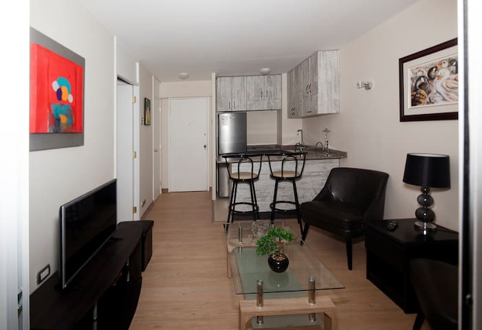 Renovated apartment. In the heart of Santiago