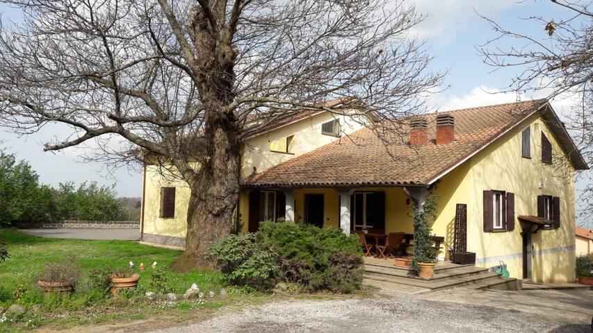Casa vacanze - Il Castagno