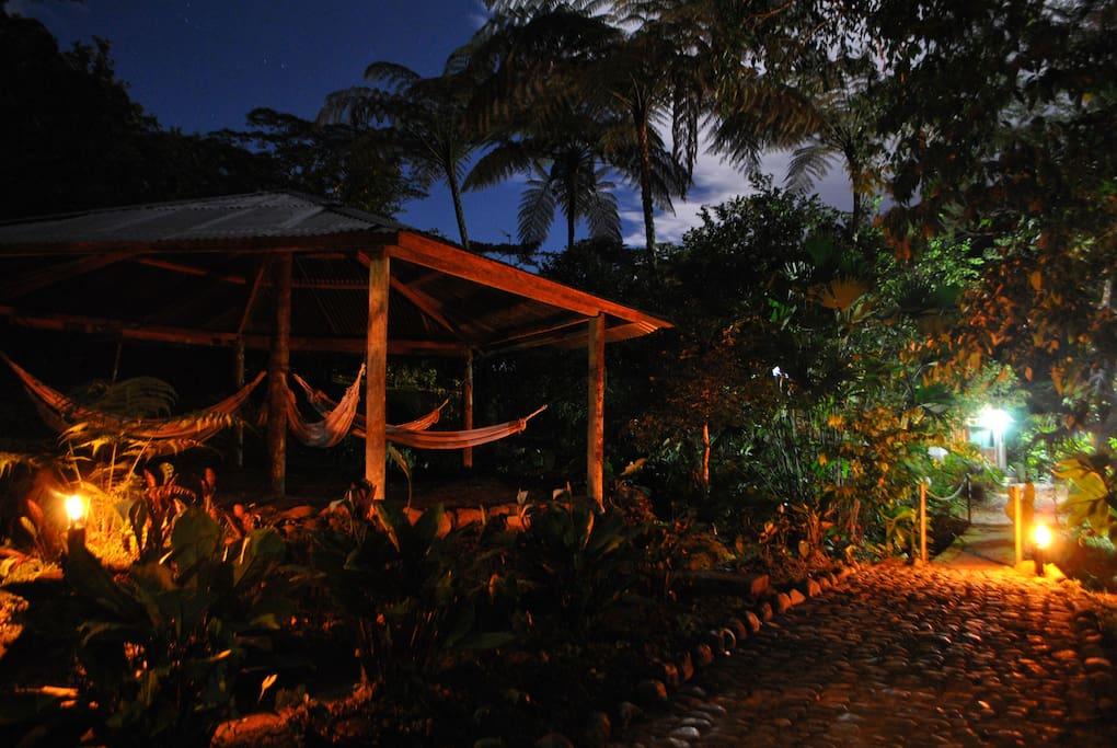 Relajate en las increíbles áreas de descanso en medio de este fantastico santuario natural en la amazonía.