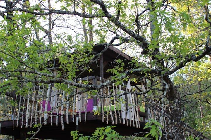 Cabane dans les arbres Sud gironde - Cazalis