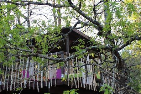 Cabane dans les arbres Sud gironde - Cazalis - Blockhütte