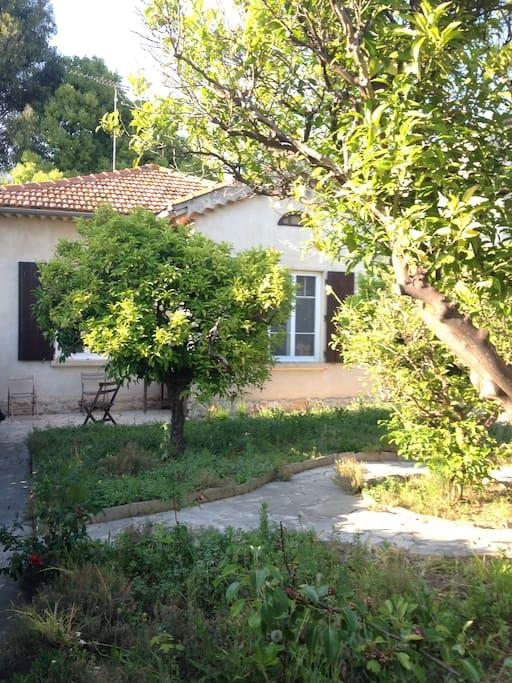 Petite maison avec jardin centre ville de hy res houses for Jardin google translate