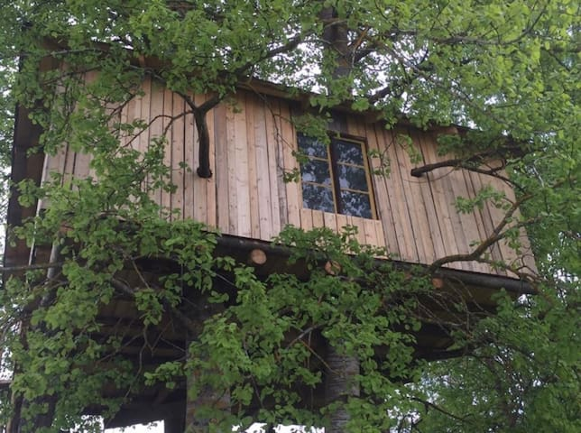 Treehouse Magpies Nest