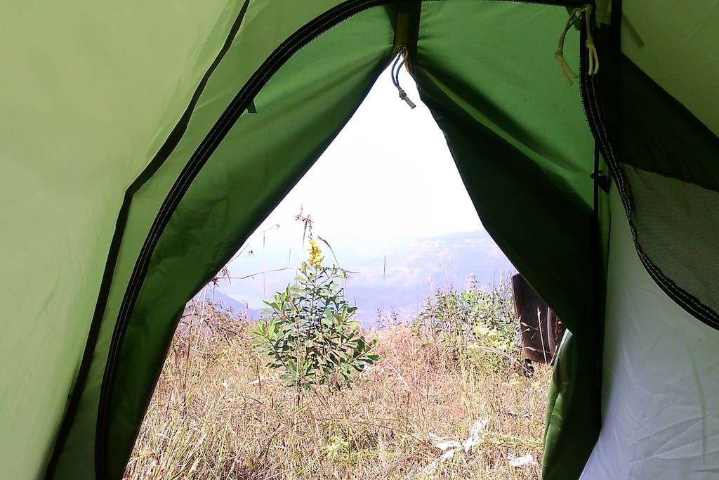 view from the entrance of the tent.