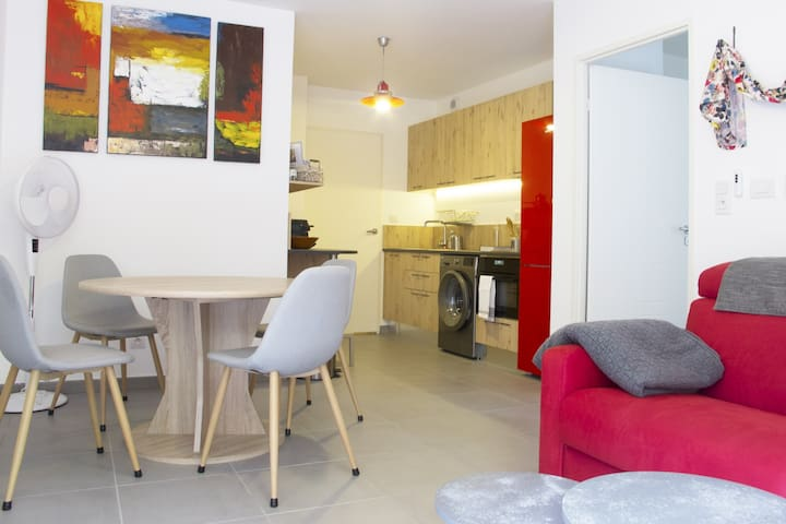 CHARMING APARTMENT IN TOULOUSE FOR 2 PEOPLE