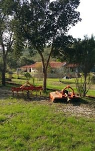 country home in amazing alentejo nature - Odemira - Huis