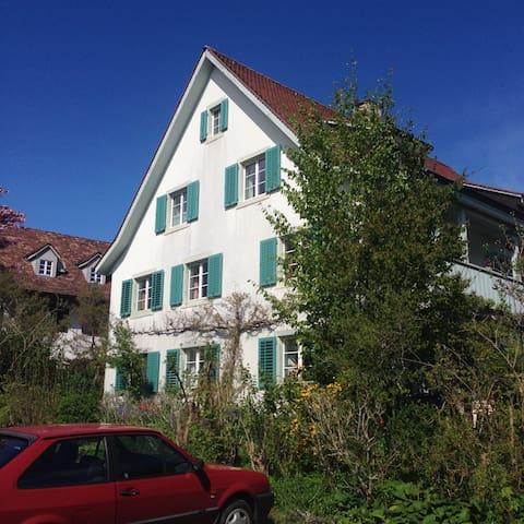 harmonisierte Insel - Dornach - Wohnung