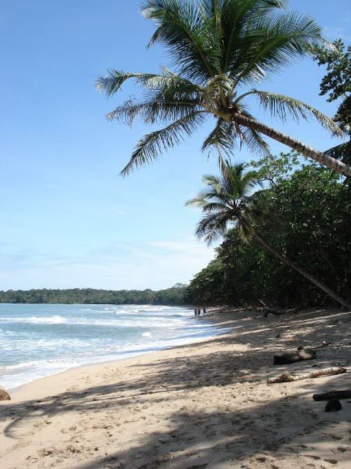 Entrance to Cahuita Park- walking distance from the house