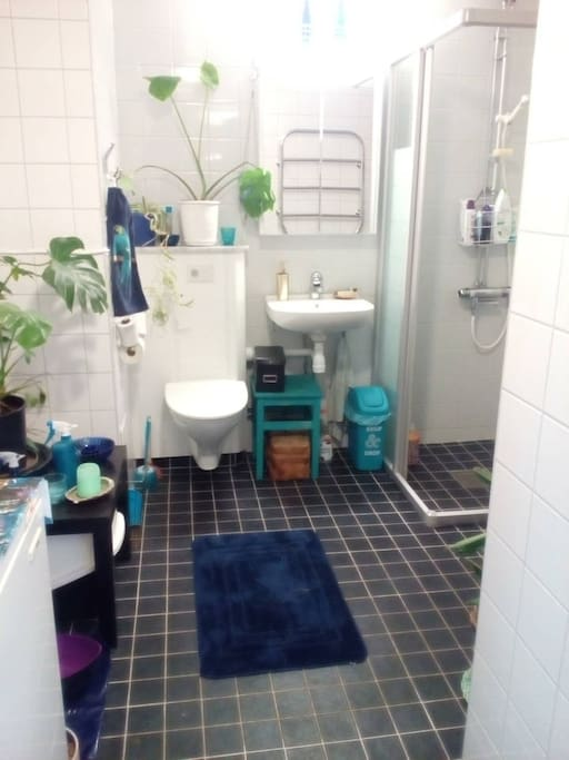 Bathroom w WC and shower.