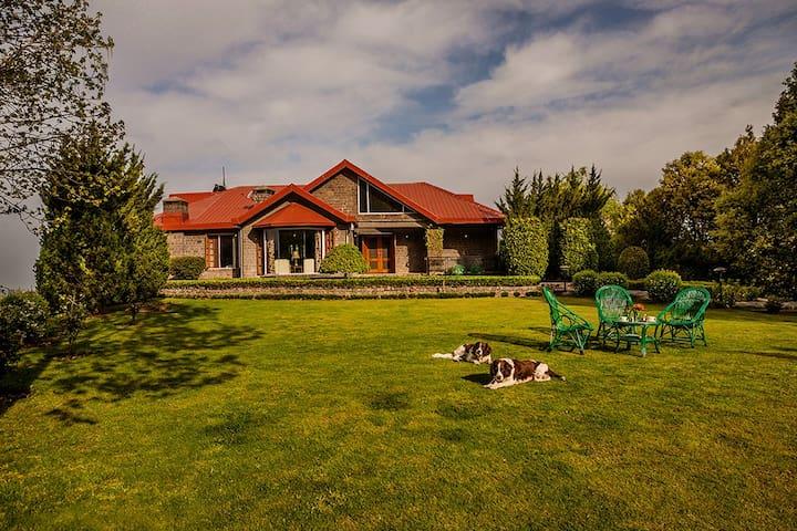4bhk Petfriendly villa in shimla Jagheri Bagh
