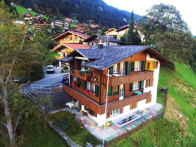 Helle, schöne Wohnung mit super Lage für Skifahren - Adelboden - Apartment