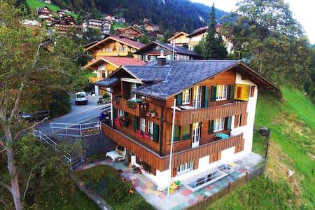 Helle, schöne Wohnung mit super Lage für Skifahren - Adelboden - Huoneisto