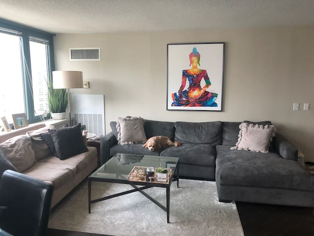 High rise 1 bedroom in downtown Chicago