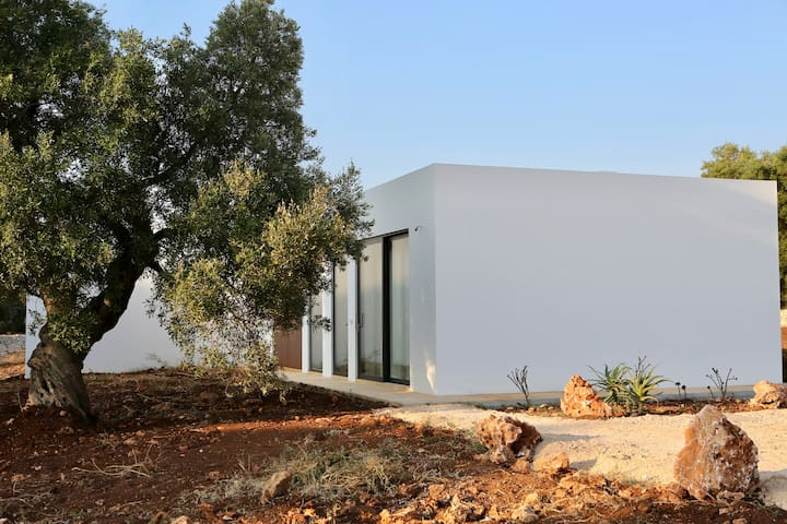 Exceptional Studio in its own olive grove