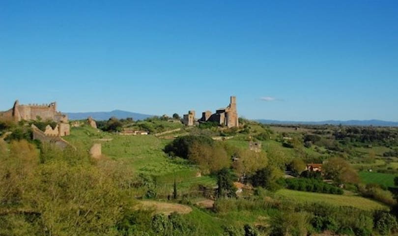 Guidebook for Tuscania