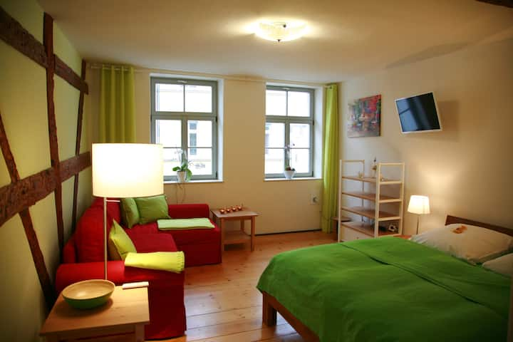 Apartment Zentrum Herderplatz AP. 2
