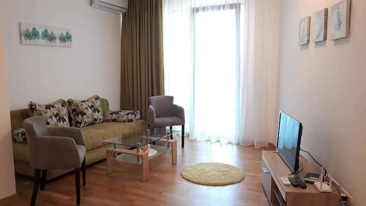 Comfortable seaside apartment