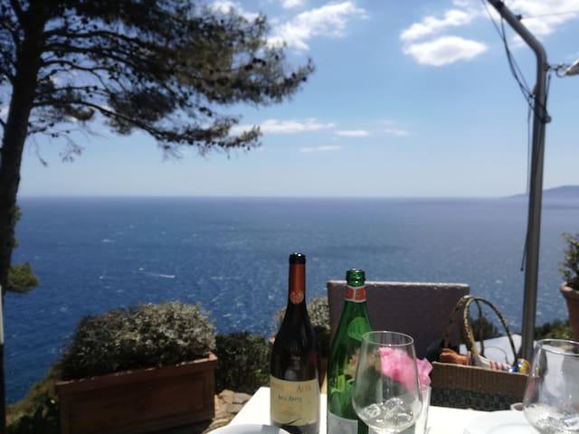 Rocket&Design cottage house - ancient olive trees