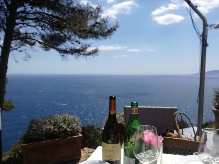 Rocket&Design Cottage House(Old olive Trees)casale