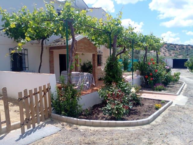 Alojamiento Rural Casilla Miguelin