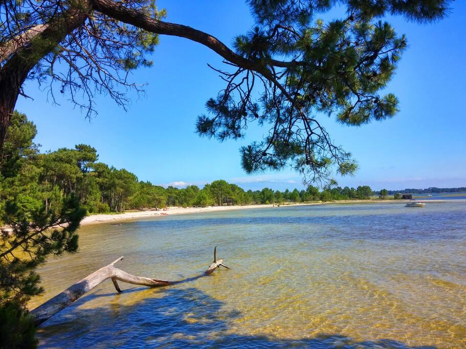 Le Lac et ses plages aux eaux cristallines.