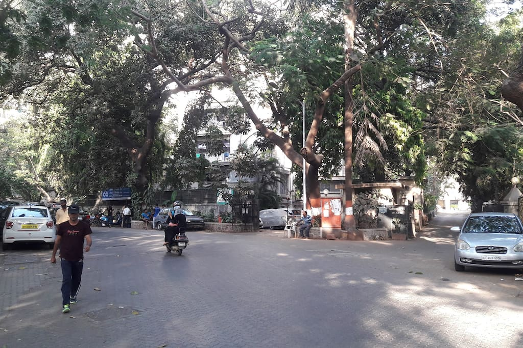 Entrance to Pali Hill Green