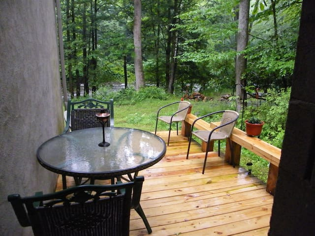 Quiet Cozy Stream Side Retreat - Cresco - Apartemen