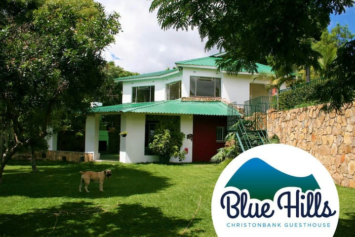 Bluehills Christonbank Guesthouse