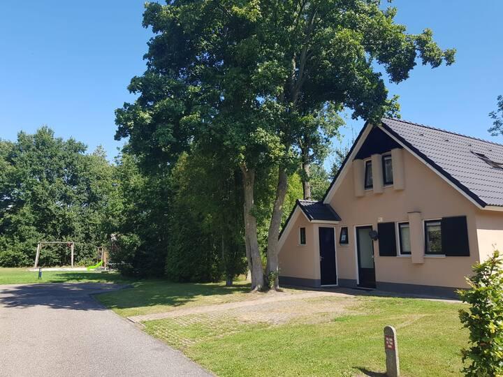 Comfortabel Fekânsjehûs Carpe Diem in Friesland