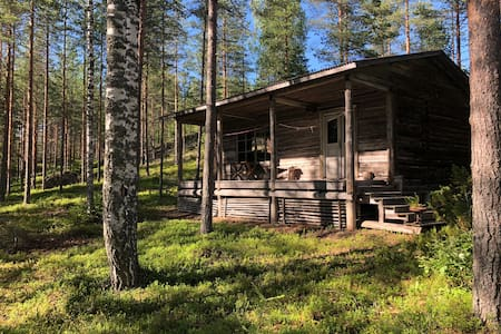Ascetic Forest Cabin with Private Beach and Sauna