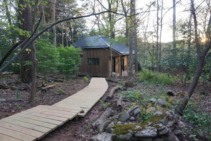 Modern Cabin Retreat