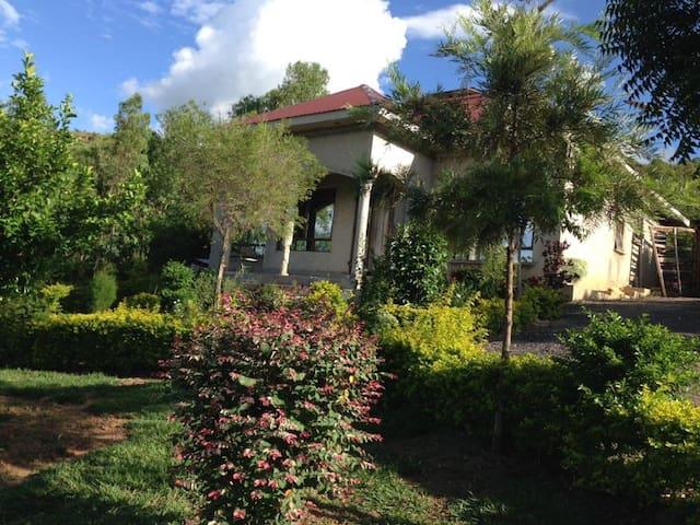Beauty&natural gardens