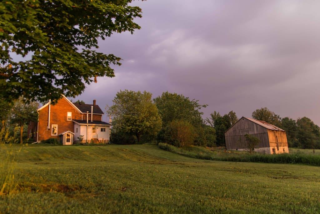 Located in the Kingston countryside, the B&B is adjacent to farms and pasture.