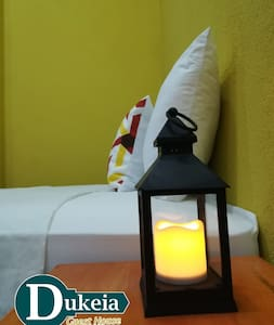 Dukeia, Colonia Maya, room 4