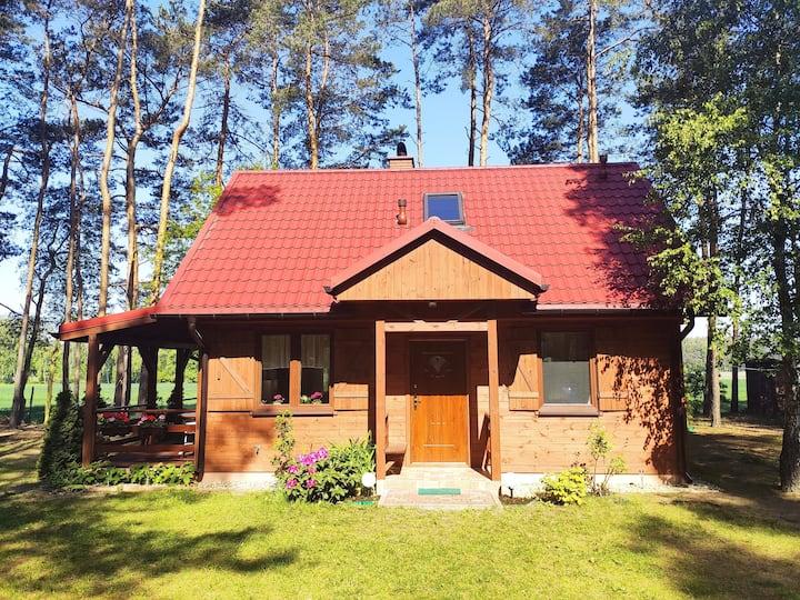 Sunny House in Anielin Near A1-A2 Łódź North