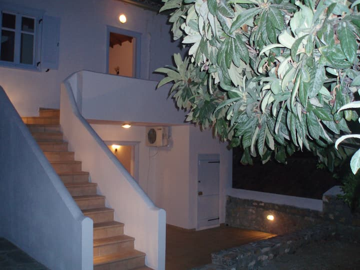 Ermina's House I