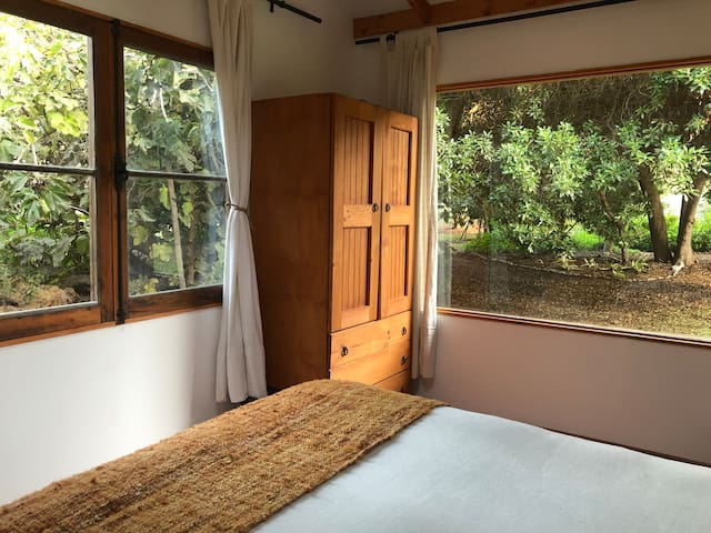 Cozy Space in the Nature - Ecolodge El Arbol