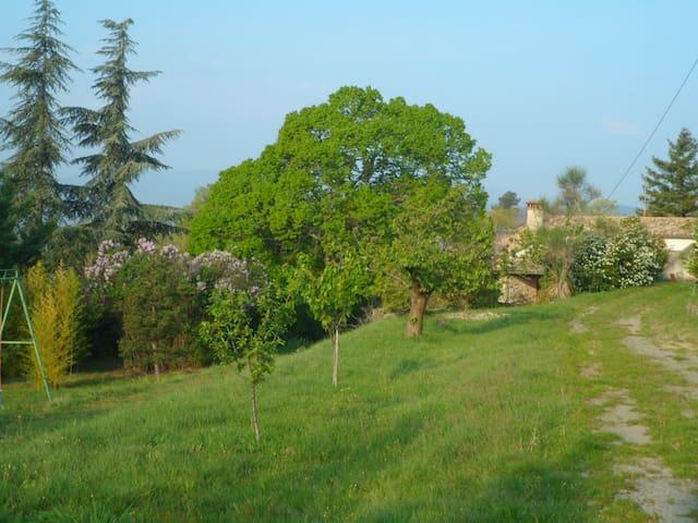 Le tilleul d'Auréac - Coux - Feriehus
