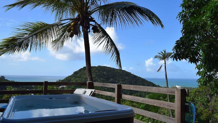 Azur : spa privé magnifique vue mer