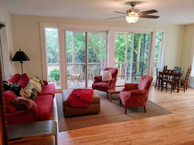 Spacious studio designed living area.  Many tall windows all looking over a private 8' fenced in garden.