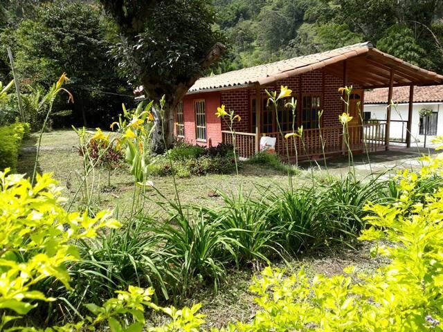 Hermosa casa rodeada de naturaleza!!