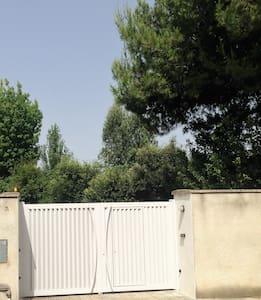 Villa con parco in Lecce - Castromediano - Villa - 1