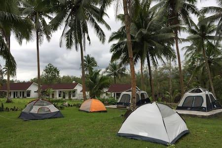 Lush Green Camp Site dormitory